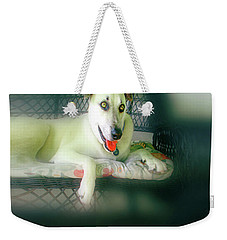 Cooper Goes Cuter Artwork 7 Weekender Tote Bag