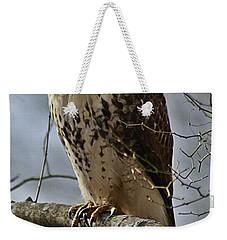 Cooper's Hawk 2 Weekender Tote Bag