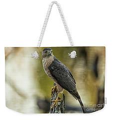 Cooper's Hawk Weekender Tote Bag by Geraldine DeBoer