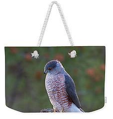 Coopers Hawk Perched Weekender Tote Bag