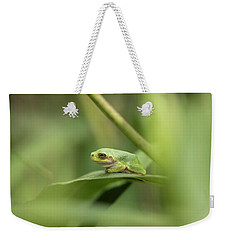 Cope's Gray Treefrog Weekender Tote Bag