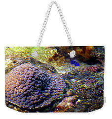 Weekender Tote Bag featuring the digital art Coral Art Cu 3 by Francesca Mackenney