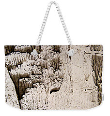 Weekender Tote Bag featuring the painting Coral Castle by Nancy Kane Chapman