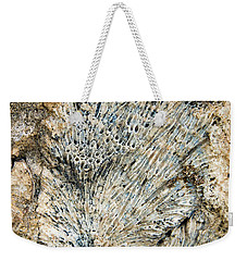 Weekender Tote Bag featuring the photograph Coral Fossil by Jean Noren