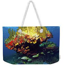 Coral Reef Scene, Calf Rock, Virgin Islands Weekender Tote Bag