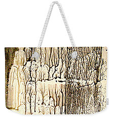 Weekender Tote Bag featuring the painting Coral Wall by Nancy Kane Chapman