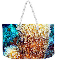 Corky Sea Finger Coral - The Muppet Of The Deep Weekender Tote Bag by Amy McDaniel