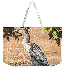 Weekender Tote Bag featuring the photograph Cormorant On Shore by Paul Freidlund
