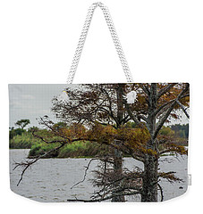 Weekender Tote Bag featuring the photograph Cormorant by Paul Freidlund