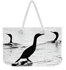 Cormorants Silhouetted Weekender Tote Bag