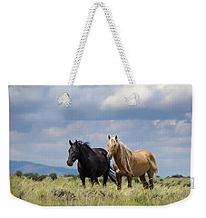 Weekender Tote Bag featuring the photograph Corona And Em Of Sand Wash Basin by Nadja Rider