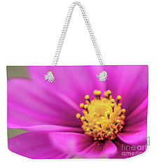 Weekender Tote Bag featuring the photograph Cosmos Pink Sensation by Sharon Mau