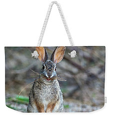 Cottontail Rabbit With Twigs 7278-042518-1cr Weekender Tote Bag