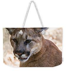 Cougar Portrait Weekender Tote Bag