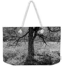 Coulee Oak Weekender Tote Bag
