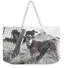 Weekender Tote Bag featuring the photograph Country Living For These Cows by Toni Hopper