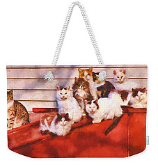 Countryside Cats Weekender Tote Bag