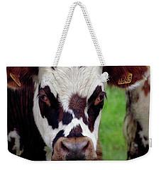 Cow Closeup Weekender Tote Bag