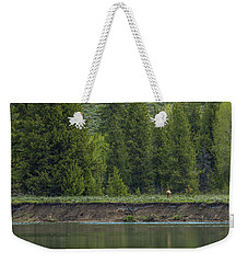 Cow Elk On The Riverbank Weekender Tote Bag