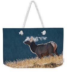 Cow Elk With Steamy Breath Weekender Tote Bag