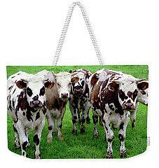 Cow Group Weekender Tote Bag
