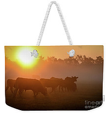 Cows In The Sunrise Mist Weekender Tote Bag
