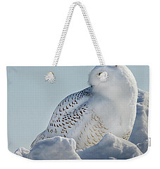 Weekender Tote Bag featuring the photograph Coy Snowy Owl by Rikk Flohr