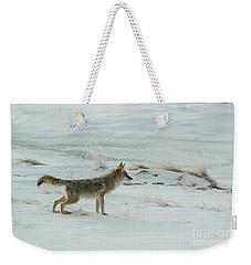 Coyote - 8962 Weekender Tote Bag