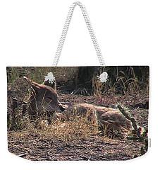 Resting Coyote Weekender Tote Bag