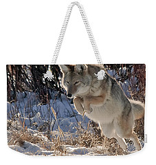 Coyote In Mid Jump Weekender Tote Bag