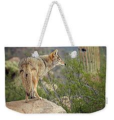 Coyote Weekender Tote Bag by Tam Ryan