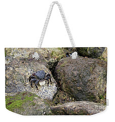 Weekender Tote Bag featuring the photograph Crab On Rocks by Suzanne Luft