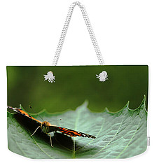 Weekender Tote Bag featuring the photograph Cradled Painted Lady by Debbie Oppermann