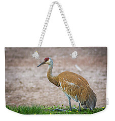 Weekender Tote Bag featuring the photograph Crane Down by Bill Pevlor
