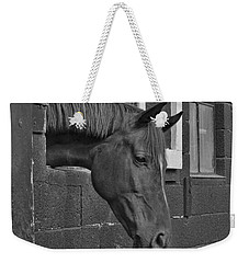 Crazy For Horses Weekender Tote Bag
