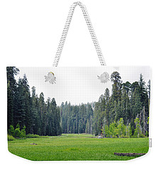 Weekender Tote Bag featuring the photograph Crescent Meadow by Kyle Hanson