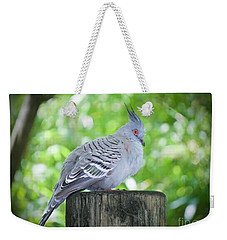 Weekender Tote Bag featuring the photograph Crested Beauty Edition 2 by Judy Kay