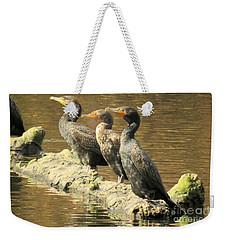Crested Trio Weekender Tote Bag