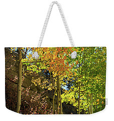 Weekender Tote Bag featuring the photograph Crisp by David Chandler