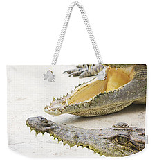 Crocodile Choir Weekender Tote Bag by Jorgo Photography - Wall Art Gallery