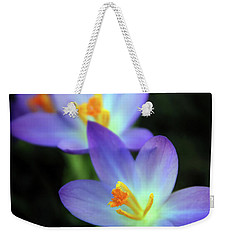 Weekender Tote Bag featuring the photograph Crocus In Bloom by Jessica Jenney