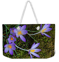 Weekender Tote Bag featuring the photograph Crocus Outreach by Roger Bester