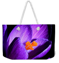 Crocus Weekender Tote Bag by Tammy Schneider