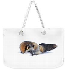 Cross Fox Weekender Tote Bag by Steve McKinzie
