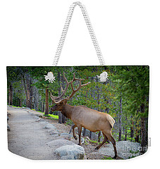 Crossing Paths With An Elk Weekender Tote Bag