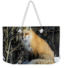 Crossroads With A Red Fox Weekender Tote Bag