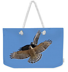 Weekender Tote Bag featuring the photograph Crow Vs Hawk by Mircea Costina Photography