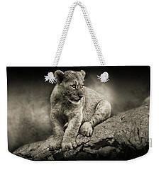 Cub Weekender Tote Bag