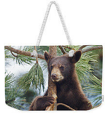 Cub In Tree Dry Brushed Weekender Tote Bag