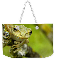 Cuban Tree Frog 000 Weekender Tote Bag